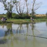 Etang de pêche