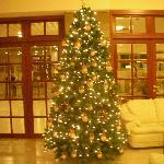 Albero di Natale - Interno dell'hotel