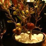 The Olive tree presentation