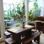 argonauta boracay boutique hotel indoor garden