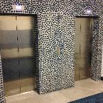 Glazed Pebbles Around Elevator