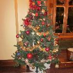 Tree in reception
