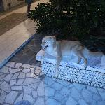 one of the owner's dogs, at the entrance of the hotel