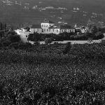 Photo of Quinta de Tourais