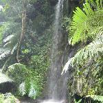 Waterfall near the Meditation Cave