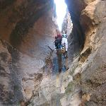 Redrock Adventure Guides -  Day Tours
