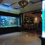 Saltwater tanks between main lobby and restaurant/bar