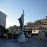 Marina in Cabo San Lucas, marlin fishing available.
