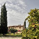 Foto de Agriturismo Vecchio Olivo