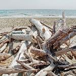 Strandimpression Marseillan Plage