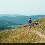 Route des Crêtes au départ du Camping au Clos de la Chaume Vosges