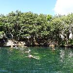 Cenote on site