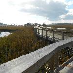 Shem Creek Park