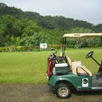 Golf beside the jungle!