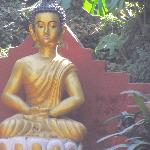 Lord Buddha's Statue in the garden