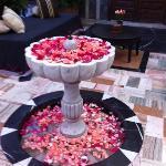 Rozenblaadjes in de lounge tuin