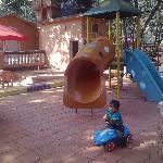 Bild från 1157904