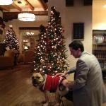 Pet friendly staff throughout...and many holiday touches adding a festive touch to a December vi