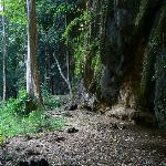 Climbing area