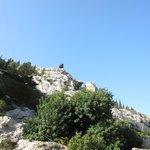 Pittoreske Kalksteinfelsen hinter unserem Ferienhaus