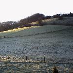 Looking over frosty fields - The Paddocks B&B