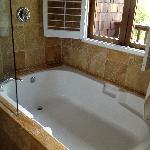 HUGE tub.