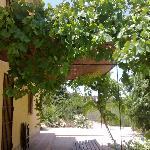 casa Joselito entrada
