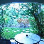Botanical View patio (DBFpro photo)