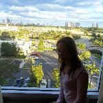 Vista al Gulfstream Park