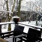 the first snow in the Mundo's garden :)
