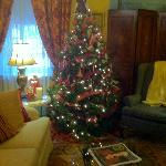 Christmas tree in the Palour