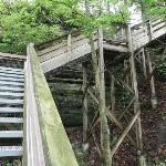 Steps from Lodge down to trails