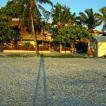 Sunrise on De Real Macaw