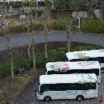 Hotel's shuttle buses