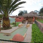 the mini golf course / animals on the grounds
