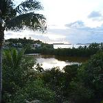 From the deck looking out at the salt pond and ocean beyond
