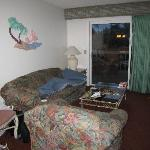 living room, other size,