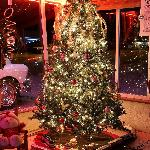 The Christmas Holiday season is celebrated with a beautifully decorated lobby.