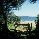 A shaded bench overlooking Cowes Beach.