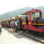 Toy Train By MTDC