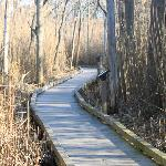 Some trails through the marshlands have wooden trails, making for an easy walk