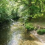 river walkham