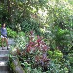 Climbing upthe hill