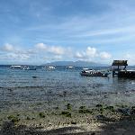 Overlooking the bay