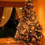 Christmas mood :-)