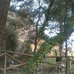 jardín-botánico frente hotel 2