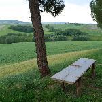 """una panchina """"di riciclo"""" per godere il panorama"""