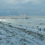 Muelle q divide la playa limpia (frente al hotel, entre los 5 mas lindos de la isla)y la de zarg