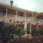 Mangapapa Petit Hotel - amazing experience