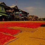 Tonle Sap Vilage